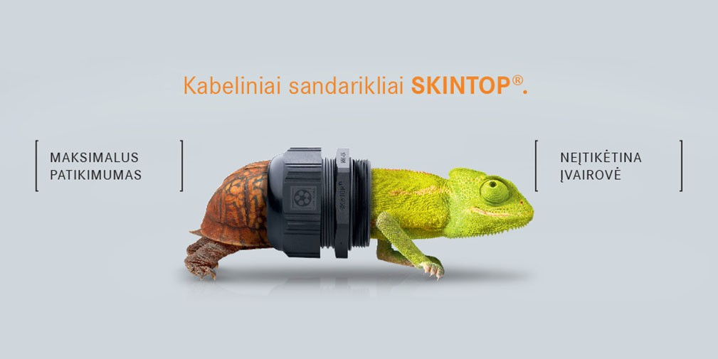 Skintop 1009x505 LT