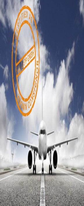 Flugzeug mit stempel en v1