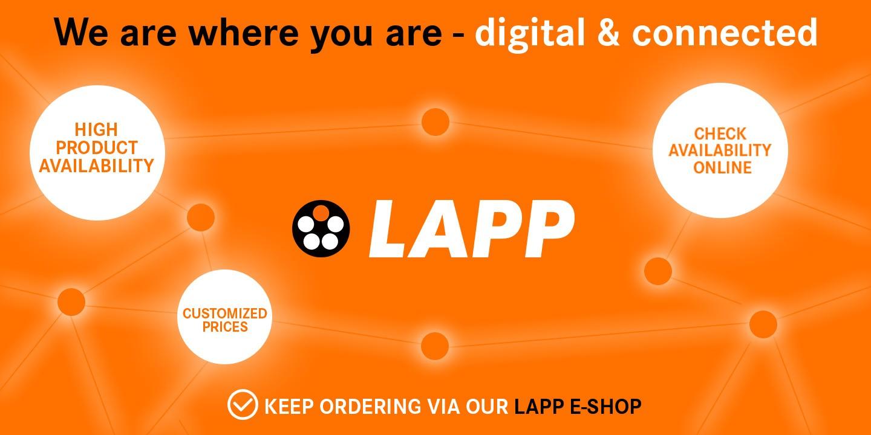 Website Picture eShop EN