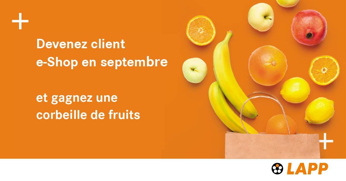Fruitbasket Banner General bis FR