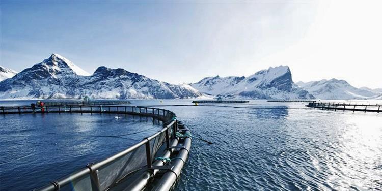 havbruk-akvakultur-sjokabel-miltronic-lapp-norge