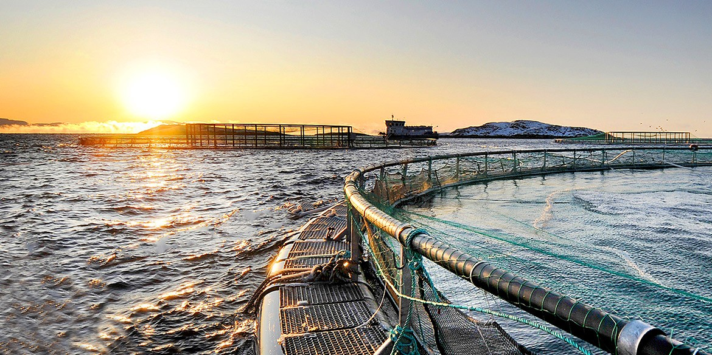 havbruk-fiskemerder-miltronic-lapp-norge