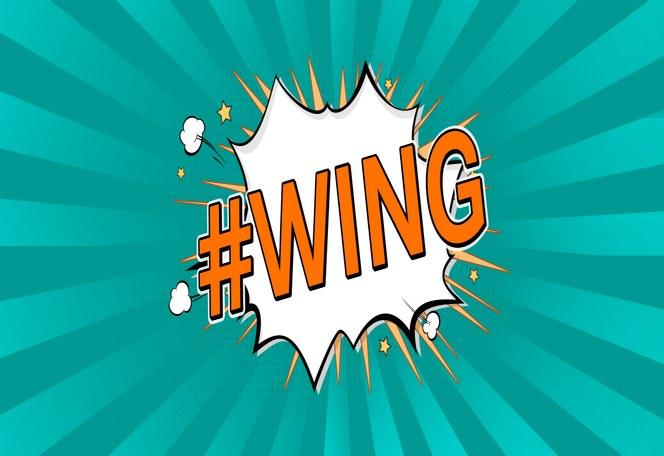 #WING/ET – Wirtschaftsingenieurwesen – Elektrotechnik