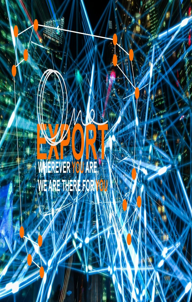 ONE EXPORT NETWORK