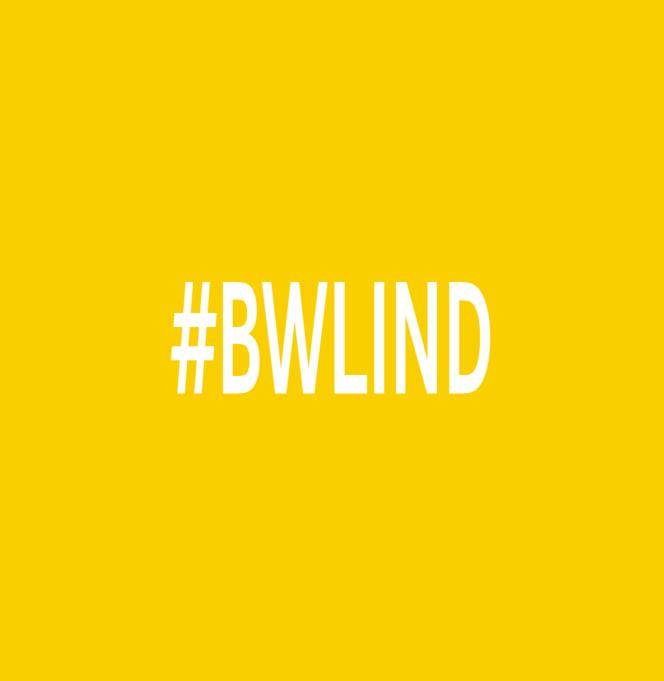 #BWLIND – B.A., BWL-Industrie