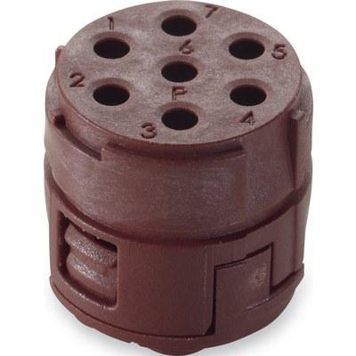 EPIC® SIGNAL M23 Insert cu 7 pini