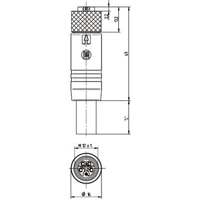 M12 Power rak hona till öppen ände, skärmad - L-kod
